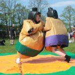 lesiureking-traditional-sumosuits