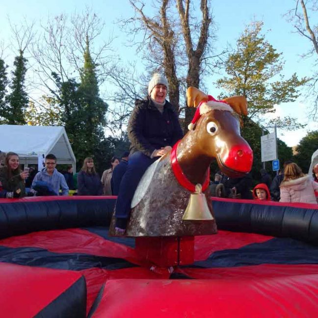 Bucking bronco hire Kent; Rodeo Bull Hire Kent