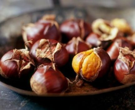 Chestnuts (Pic 4)