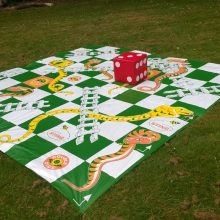 Giant Snakes and Ladders (Pic 2)