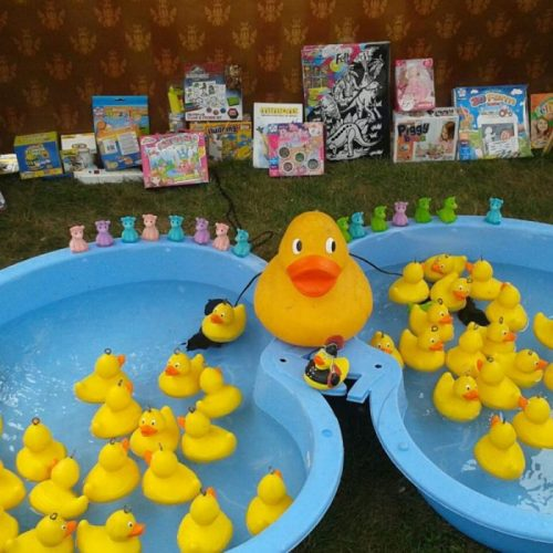 Hook a duck side stall game hire