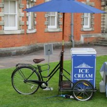 Ice Cream Trike (Pic 3)