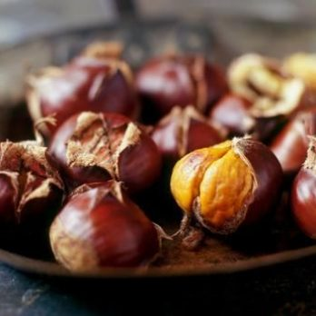 Roasted chestnut stall hire london
