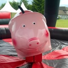 Rodeo Pig (Pic 7)