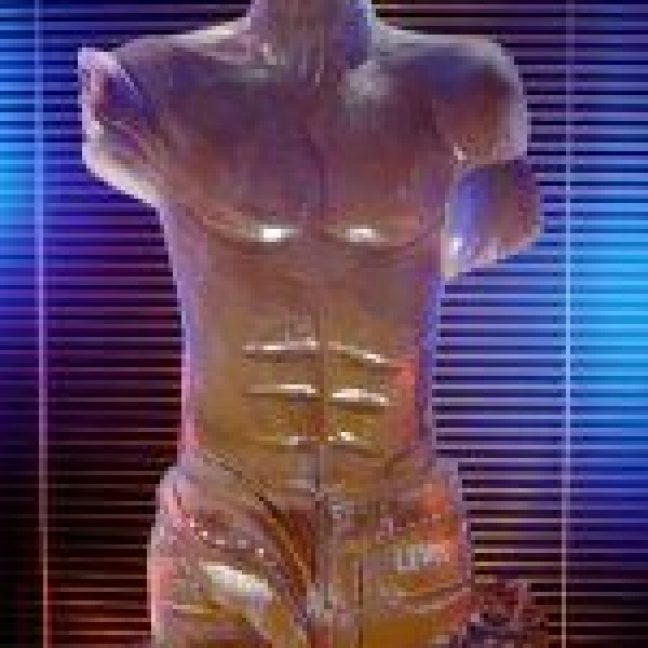 leisureking-icesculptures-maletorso