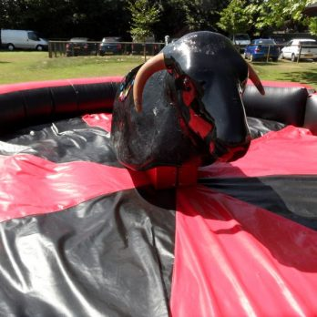 leisureking-rodeo-bull-1