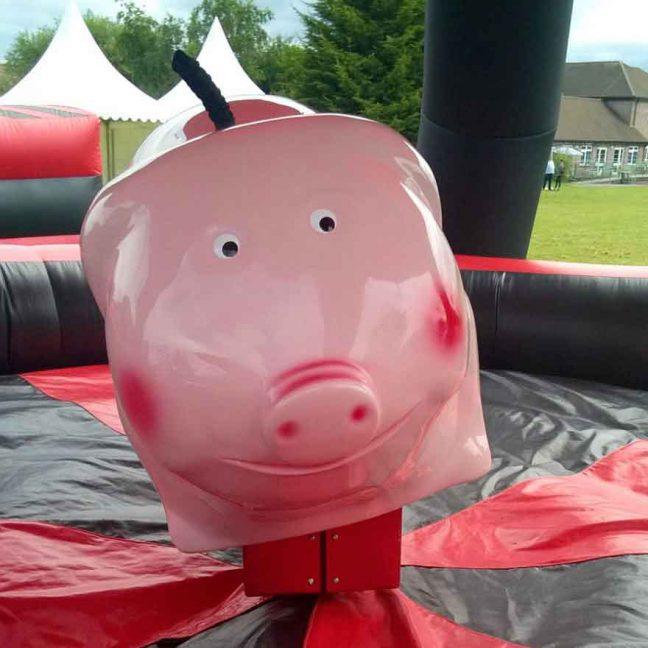 leisureking-rodeo-pig