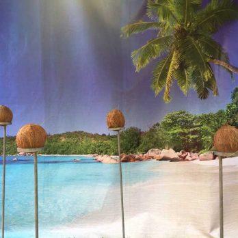 leisureking-sidestalls-coconutshy-2